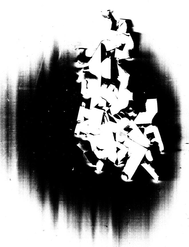 Disjecta scan 1.jpg